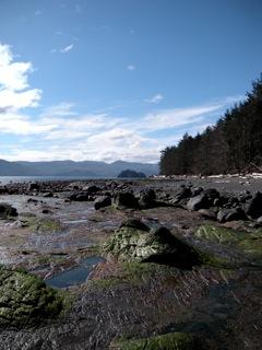 Haida Gwaii Ocean Picture
